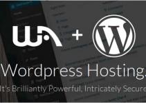 what website hosting plan