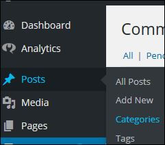 WordPress posts categories