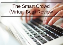 The Smart Crowd (Virtual Bee) Review – Work at home data entry jobs