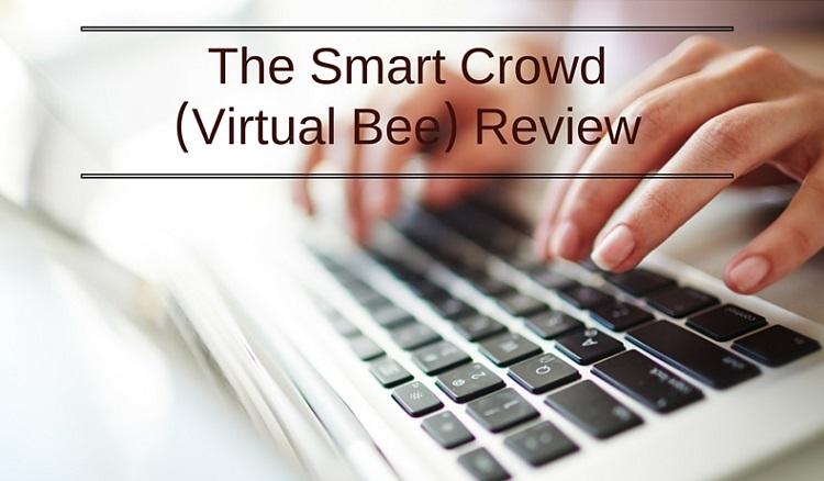 The Smart Crowd (Virtual Bee) Review - Work at home data