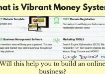 vibrant money system review