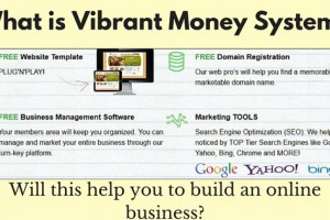 What is Vibrant Money System