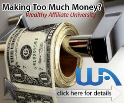 wealthy affiliate training program