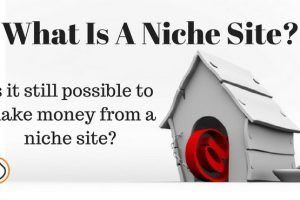 What is a niche site?