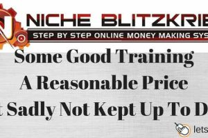 Nicheblitzkrieg review good training not up to date